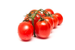 Pomodori rossi bagnati freschi Fotografia Stock