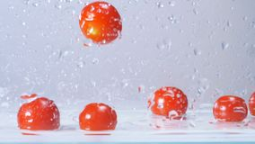 Pomodori rossi bagnati freschi saporiti che cadono in acqua con la grande spruzzatura Movimento lento video d archivio