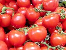 Pomodori rossi di Tel Aviv sul bazar 2013 Fotografia Stock