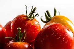 Pomodori rossi e gialli con le gocce Fotografia Stock Libera da Diritti