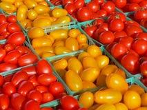 Pomodori rossi e gialli dell'uva Fotografia Stock Libera da Diritti