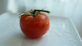 Pomodori rossi freschi con le gocce di acqua sulla pelle del pomodoro Frutti della miscela La frutta fresca si chiude in su Cibo  video d archivio