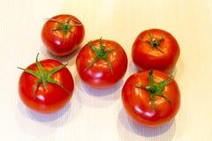 Pomodori rossi luminosi con le foglie verdi fotografia stock libera da diritti
