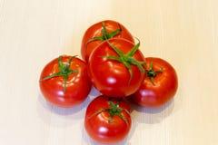 Pomodori rossi luminosi con le foglie verdi fotografia stock