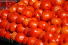 Pomodori rossi maturi e luminosi con il sole che splende su loro al mercato dell'agricoltore a Charleston, Carolina del Sud Fotografia Stock