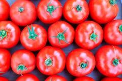Pomodori rossi organici al mercato del ` degli agricoltori Immagine Stock