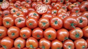 Pomodori rossi squisiti immagine stock