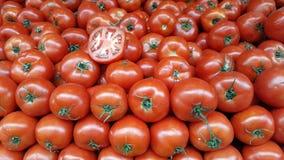 Pomodori rossi squisiti fotografia stock