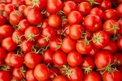Pomodori rossi squisiti Un mucchio dei pomodori Azienda agricola di agricoltura del mercato del vassoio di estate in pieno dei po Immagini Stock Libere da Diritti