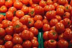 Pomodori rossi squisiti Un mucchio dei pomodori Azienda agricola di agricoltura del mercato del vassoio di estate in pieno dei po Fotografie Stock Libere da Diritti