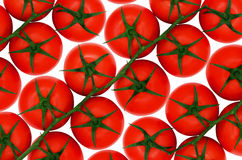 Pomodori rossi su backround isolato Fotografia Stock Libera da Diritti