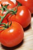 Pomodori rossi su una vite fotografia stock