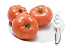 Pomodori rossi sulla zolla bianca Fotografie Stock Libere da Diritti