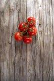 Pomodori rotondi lisci Fotografia Stock Libera da Diritti