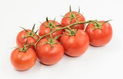 Pomodori rumeni freschi di eco Immagini Stock