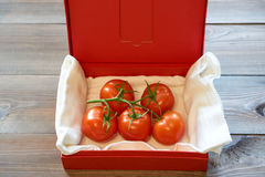 Pomodori saporiti su un ramo in scatola di rosso del cartone Fotografia Stock Libera da Diritti