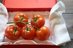 Pomodori saporiti su un ramo in scatola di rosso del cartone Fotografia Stock