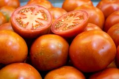 Pomodori a schermo pieno fotografia stock