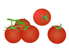 Pomodori su bianco Fotografia Stock Libera da Diritti