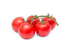 Pomodori su fondo bianco Fotografia Stock Libera da Diritti