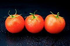 Pomodori su fondo nero Fotografie Stock Libere da Diritti