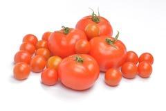 Pomodori su priorità bassa bianca Fotografie Stock Libere da Diritti
