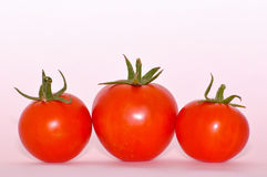 Pomodori su priorità bassa bianca Immagine Stock