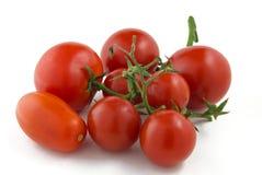 Pomodori su un fondo bianco Fotografia Stock Libera da Diritti