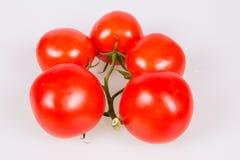 Pomodori su un ramo Fotografie Stock