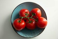 Pomodori su un ramo su un piatto del turchese fotografie stock libere da diritti