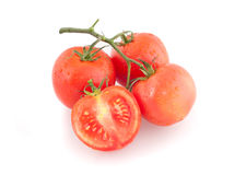 Pomodori su una priorità bassa bianca Immagine Stock Libera da Diritti