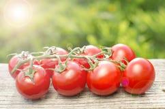 Pomodori su una tabella di legno Immagine Stock Libera da Diritti