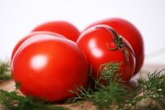 Pomodori sugosi Fotografie Stock