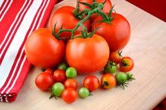 Pomodori sugosi sulla vite Immagine Stock Libera da Diritti