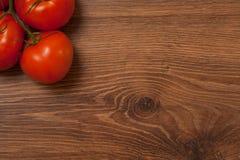 Pomodori sul ramo Fotografia Stock Libera da Diritti