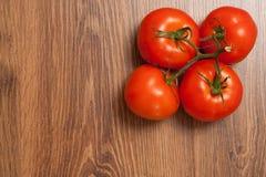 Pomodori sul ramo Fotografie Stock
