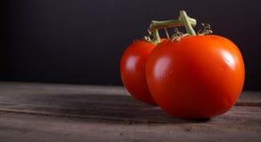 Pomodori sulla vite Fotografia Stock Libera da Diritti
