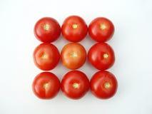 Pomodori in un modulo di rettangolo Fotografia Stock Libera da Diritti
