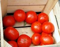 Pomodori in una casella. fotografie stock libere da diritti