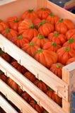Pomodori in una casella fotografie stock