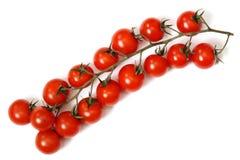 Pomodori una ciliegia. Fotografie Stock