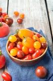 Pomodori variopinti Fotografie Stock Libere da Diritti