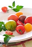Pomodori variopinti immagini stock libere da diritti