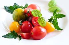 Pomodori variopinti fotografia stock libera da diritti
