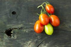Pomodori verdi e rossi su un fondo immagine stock libera da diritti