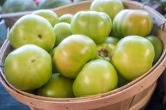 Pomodori verdi freschi Fotografia Stock
