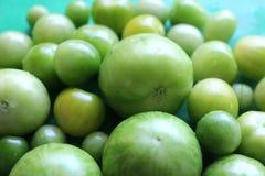 Pomodori verdi nostrani Fotografia Stock Libera da Diritti