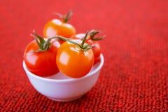 Pomodori in zolla bianca Immagine Stock Libera da Diritti