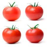 Pomodoro. Fotografia Stock