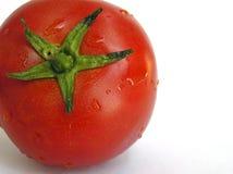 Pomodoro bagnato Immagini Stock